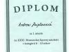 diplom-Rapčanová-001